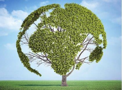 Ver cursos online em Meio Ambiente